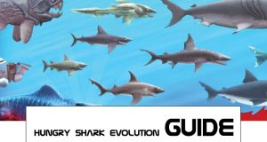 hungry shark evolution guides