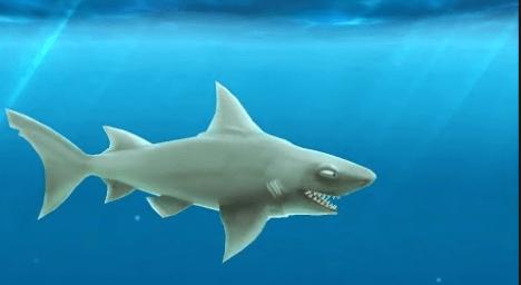 Best Hungry Shark Evolution Guide, Cheats, Secrets [Unlock