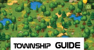 township guide