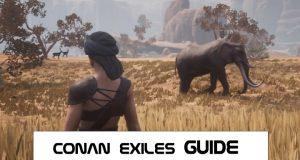 CONAN EXILES GUIDE